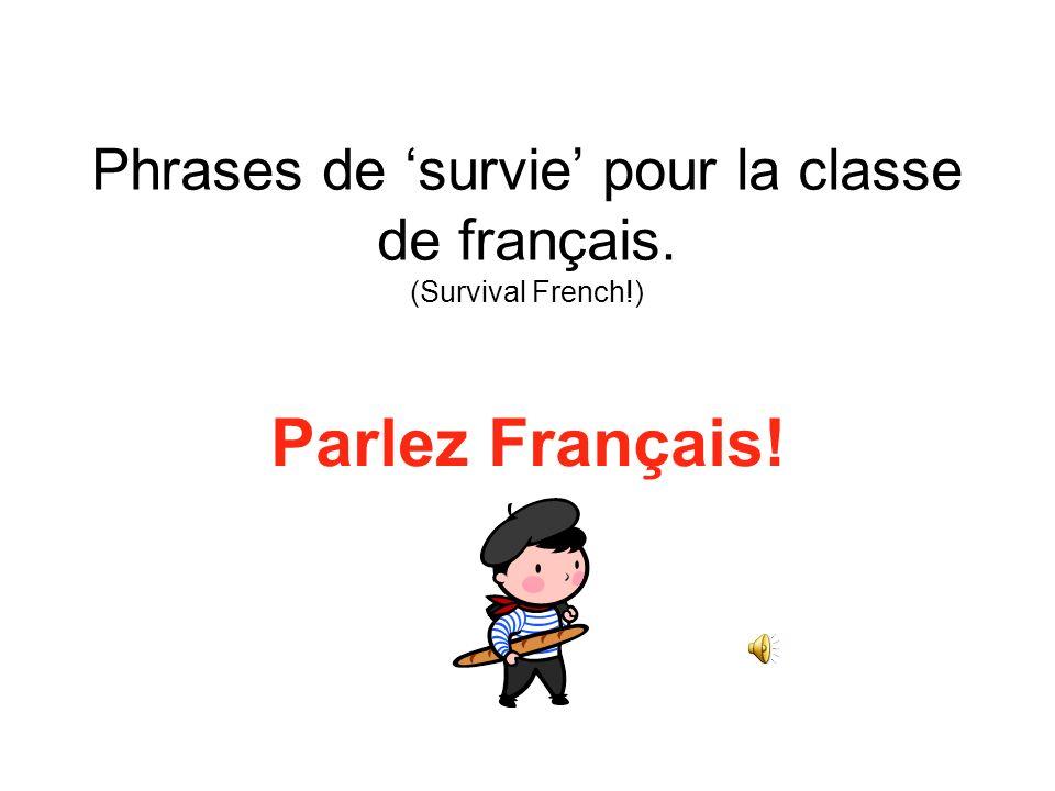 Phrases de survie pour la classe de français. (Survival French!) Parlez Français!