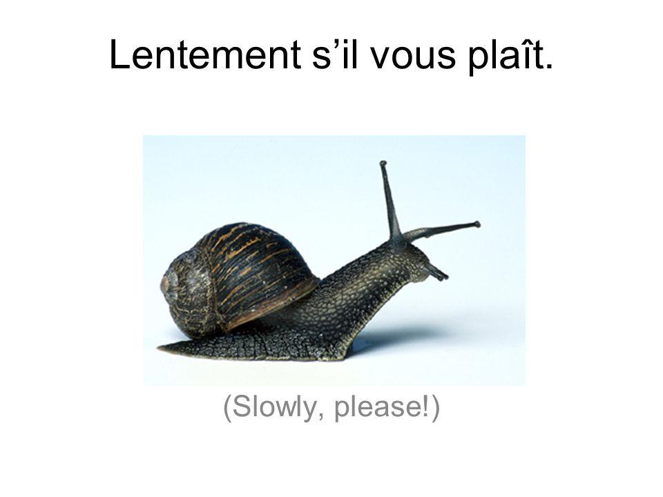 Lentement sil vous plaît. (Slowly, please!)