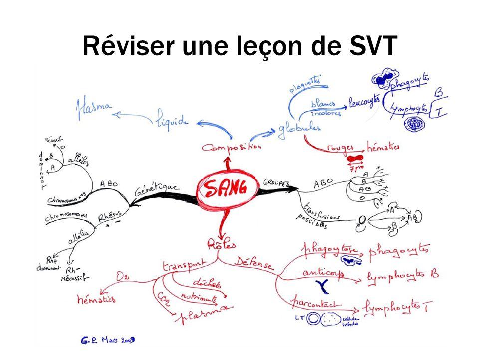 Réviser une leçon de SVT