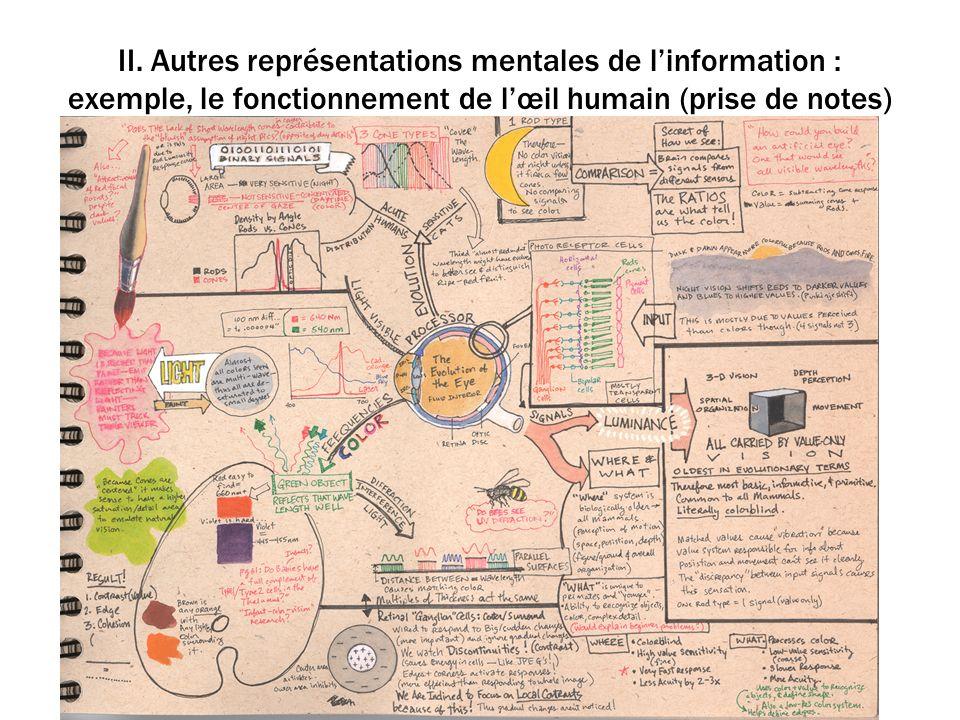 II. Autres représentations mentales de linformation : exemple, le fonctionnement de lœil humain (prise de notes)
