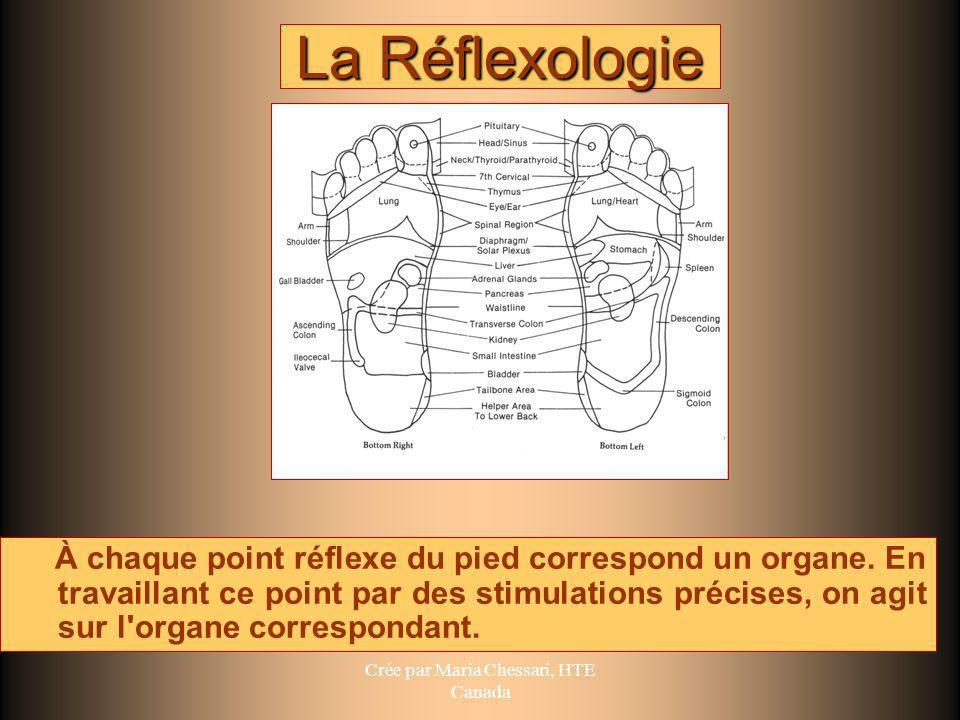 La Réflexologie À chaque point réflexe du pied correspond un organe. En travaillant ce point par des stimulations précises, on agit sur l'organe corre