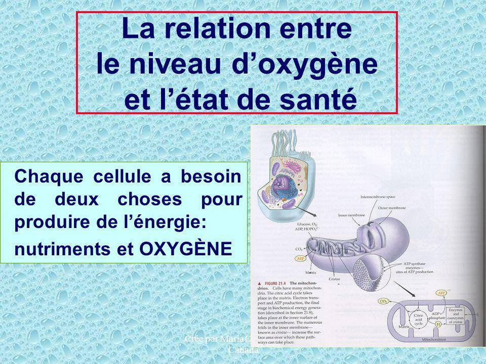 Crée par Maria Chessari, HTE Canada La relation entre le niveau doxygène et létat de santé Chaque cellule a besoin de deux choses pour produire de lén