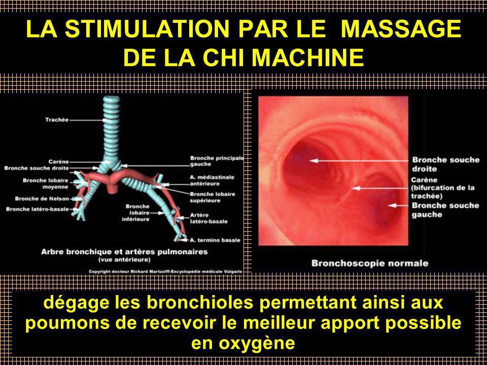 Crée par Maria Chessari, HTE Canada LA STIMULATION PAR LE MASSAGE DE LA CHI MACHINE dégage les bronchioles permettant ainsi aux poumons de recevoir le
