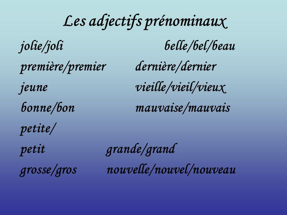 Les adjectifs prénominaux jolie/jolibelle/bel/beau première/premierdernière/dernier jeunevieille/vieil/vieux bonne/bonmauvaise/mauvais petite/ petitgr