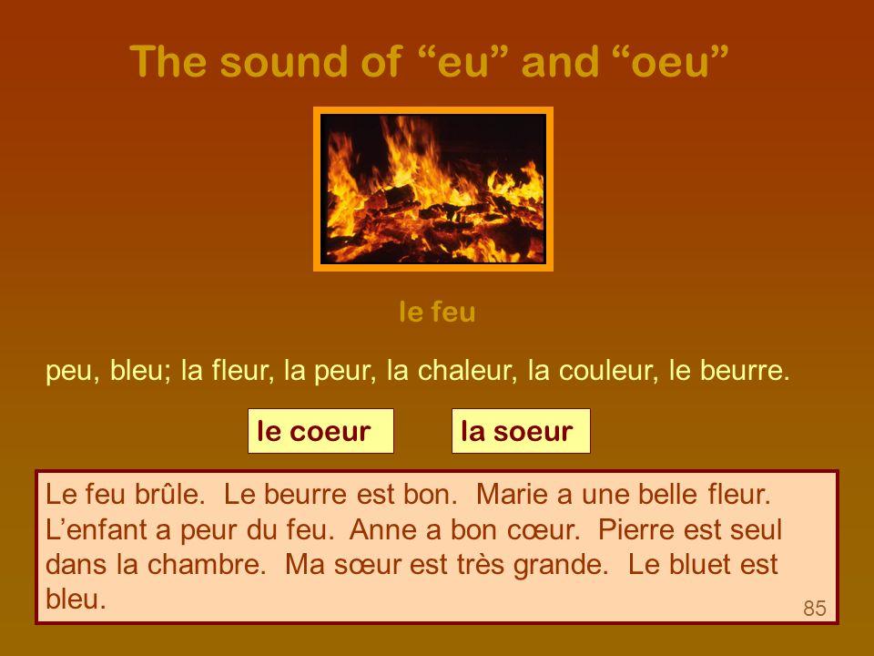 The sound of eu and oeu le feu peu, bleu; la fleur, la peur, la chaleur, la couleur, le beurre. le coeurla soeur Le feu brûle. Le beurre est bon. Mari