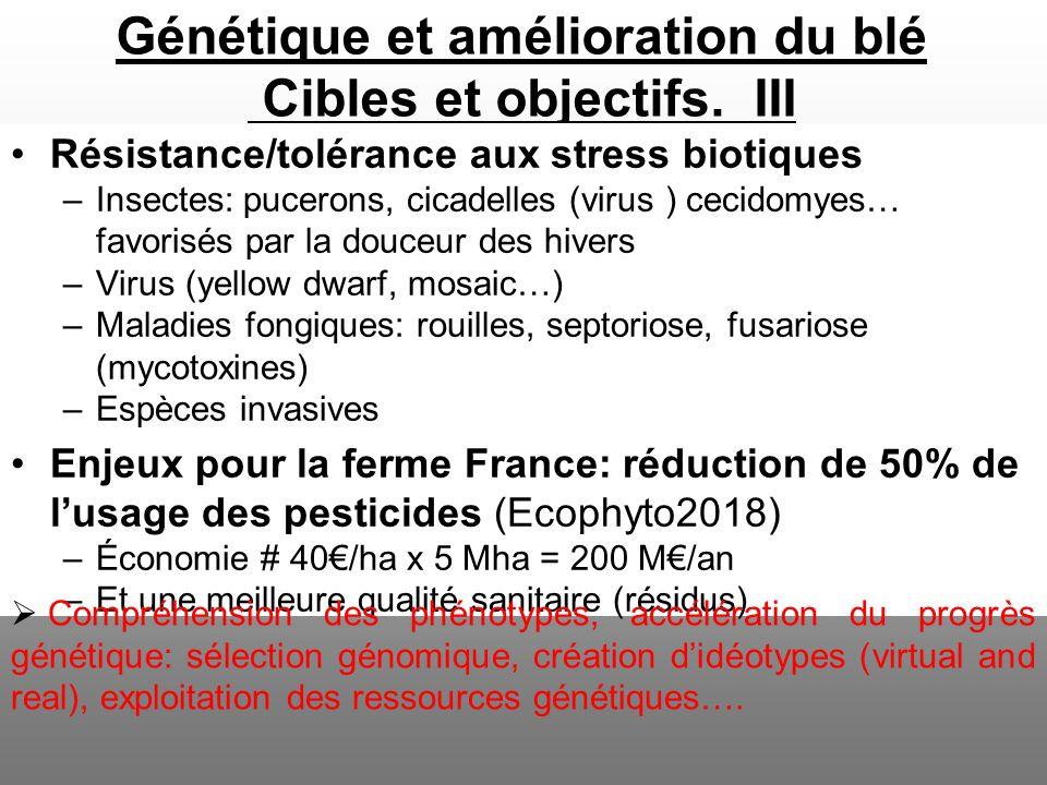 Génétique et amélioration du blé Cibles et objectifs. III Résistance/tolérance aux stress biotiques –Insectes: pucerons, cicadelles (virus ) cecidomye