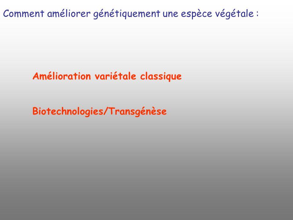 Comment améliorer génétiquement une espèce végétale : Amélioration variétale classique Biotechnologies/Transgénèse
