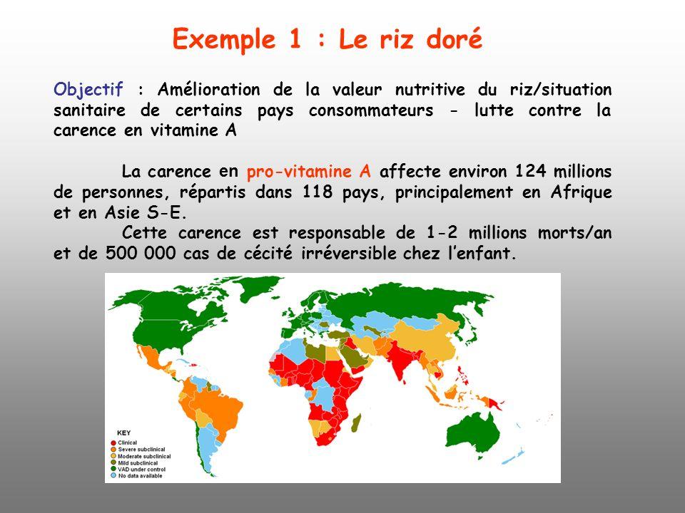 Objectif : Amélioration de la valeur nutritive du riz/situation sanitaire de certains pays consommateurs - lutte contre la carence en vitamine A La ca