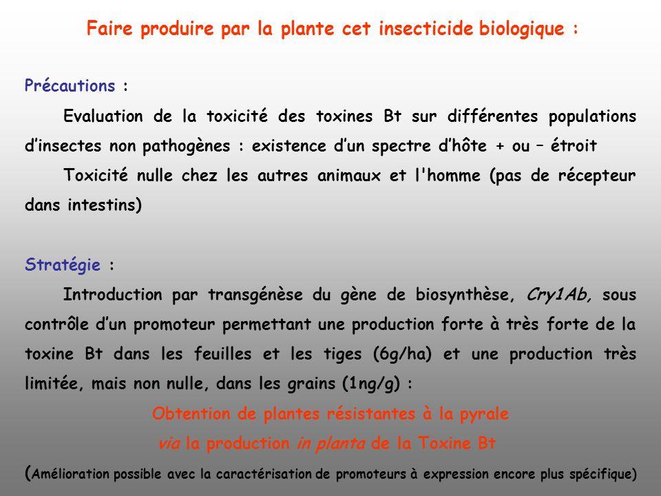Précautions : Evaluation de la toxicité des toxines Bt sur différentes populations dinsectes non pathogènes : existence dun spectre dhôte + ou – étroi