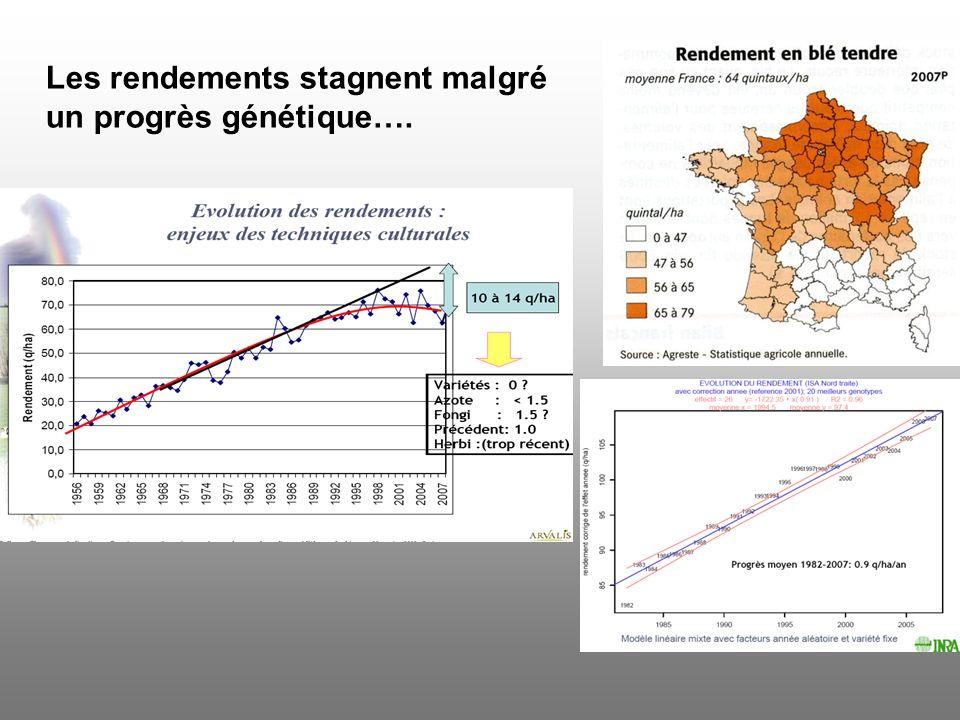 Les rendements stagnent malgré un progrès génétique….