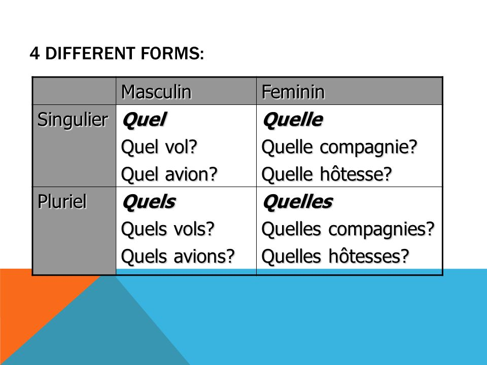 4 DIFFERENT FORMS: MasculinFeminin SingulierQuel Quel vol.