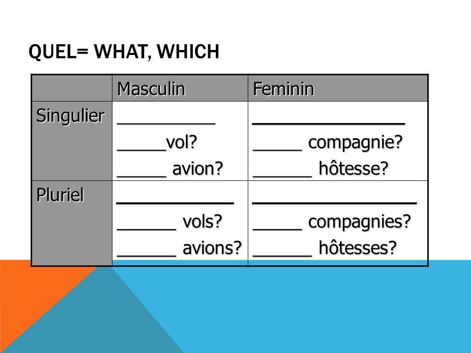 QUEL= WHAT, WHICH MasculinFeminin Singulier_______________vol.