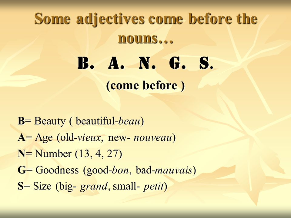 Some adjectives come before the nouns… B. A. N. G. S. (come before ) B= Beauty ( beautiful-beau) A= Age (old-vieux, new- nouveau) N= Number (13, 4, 27
