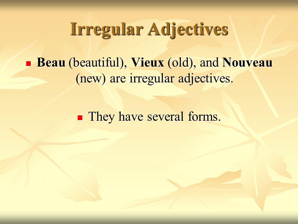 2 ways to say it 5 ways to spell it Irregular Adjectives Masculine Masculine Starts w/ Vowel Feminine Masculine Plural Feminine Plural Beautifulbeaubelbellebeauxbelles Oldvieuxvieilvieillevieuxvieilles Newnouveaunouvelnouvellenouveauxnouvelles