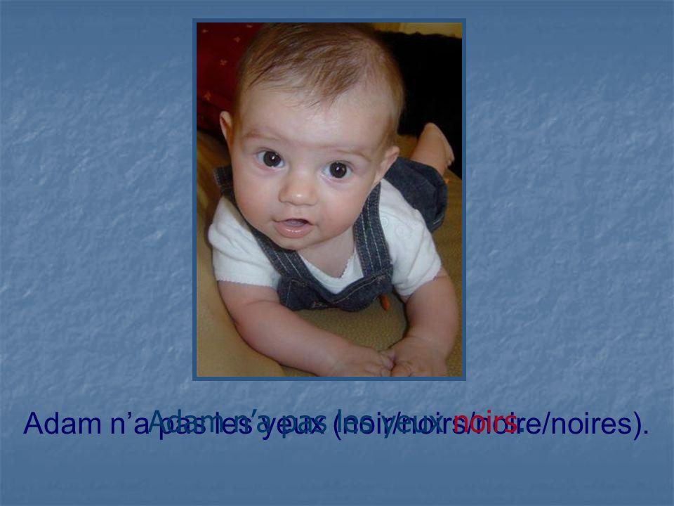 Adam na pas les yeux (noir/noirs/noire/noires). Adam na pas les yeux noirs.