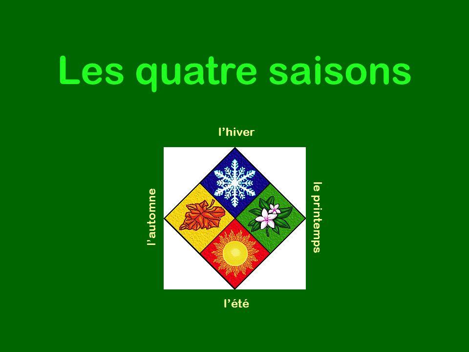 Les quatre saisons lhiver le printemps lautomne lété