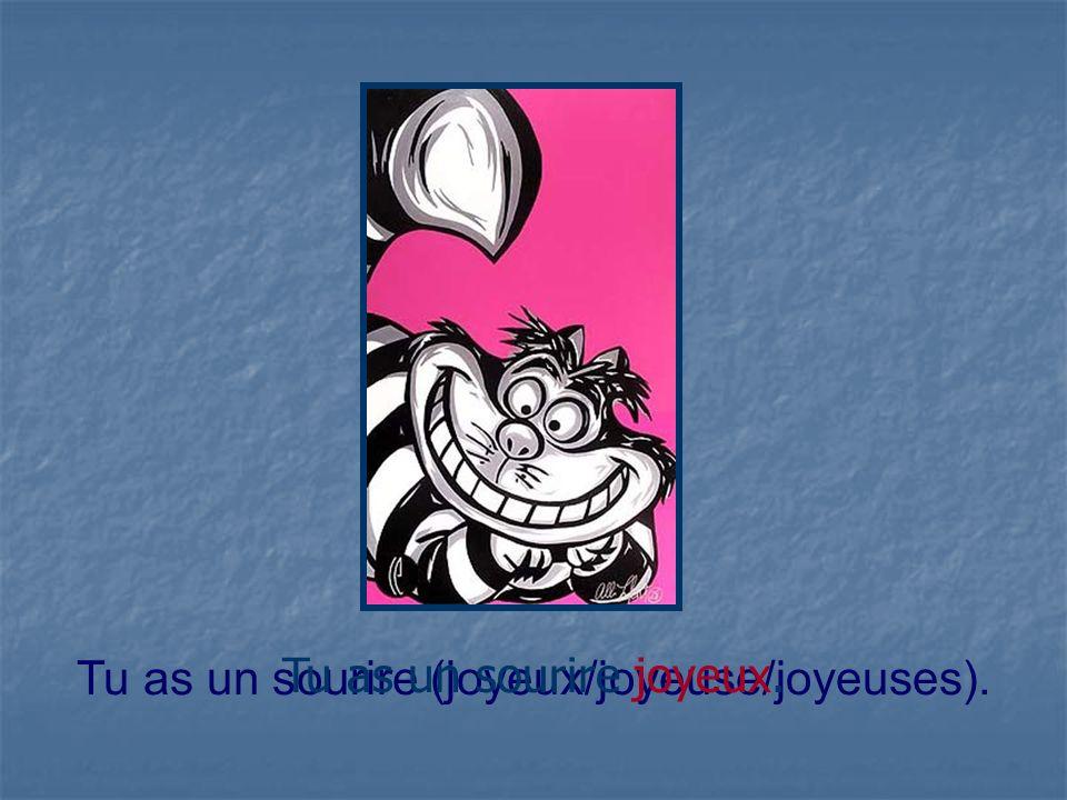 Tu as un sourire (joyeux/joyeuse/joyeuses). Tu as un sourire joyeux.