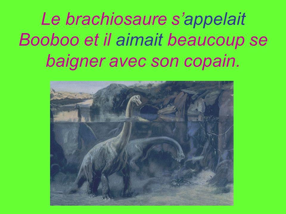 Le brachiosaure sappelait Booboo et il aimait beaucoup se baigner avec son copain.