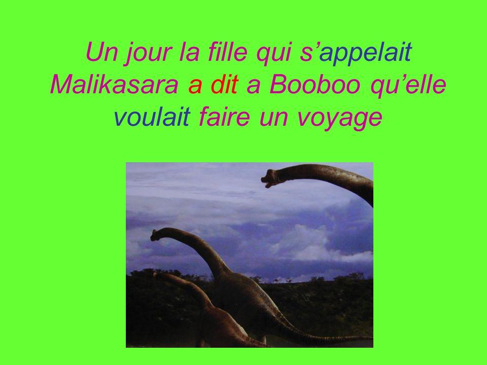 Un jour la fille qui sappelait Malikasara a dit a Booboo quelle voulait faire un voyage