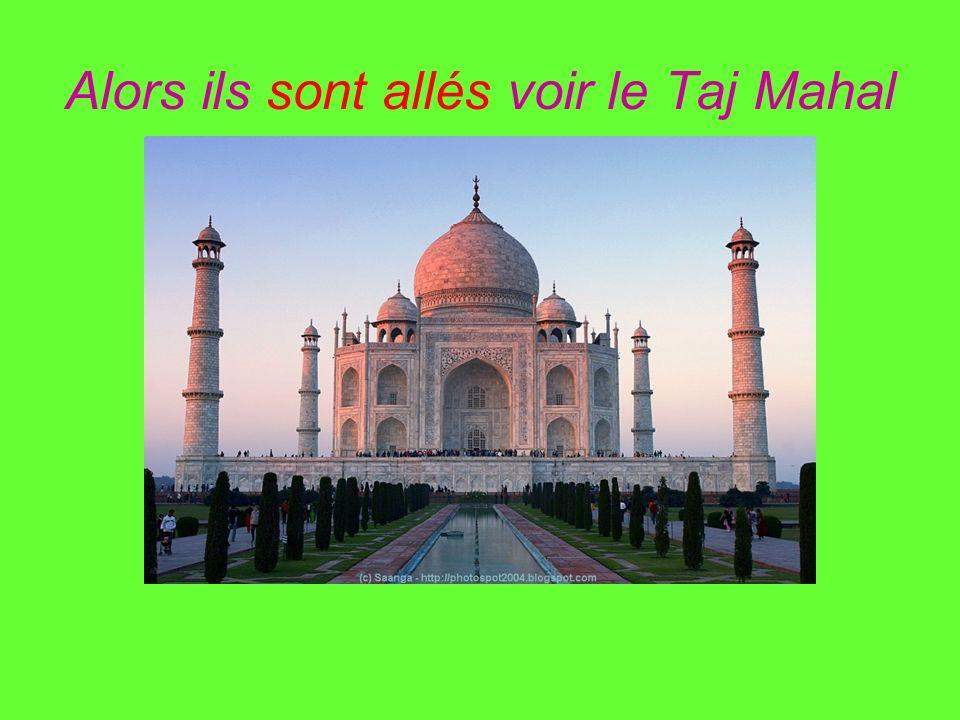 Alors ils sont allés voir le Taj Mahal