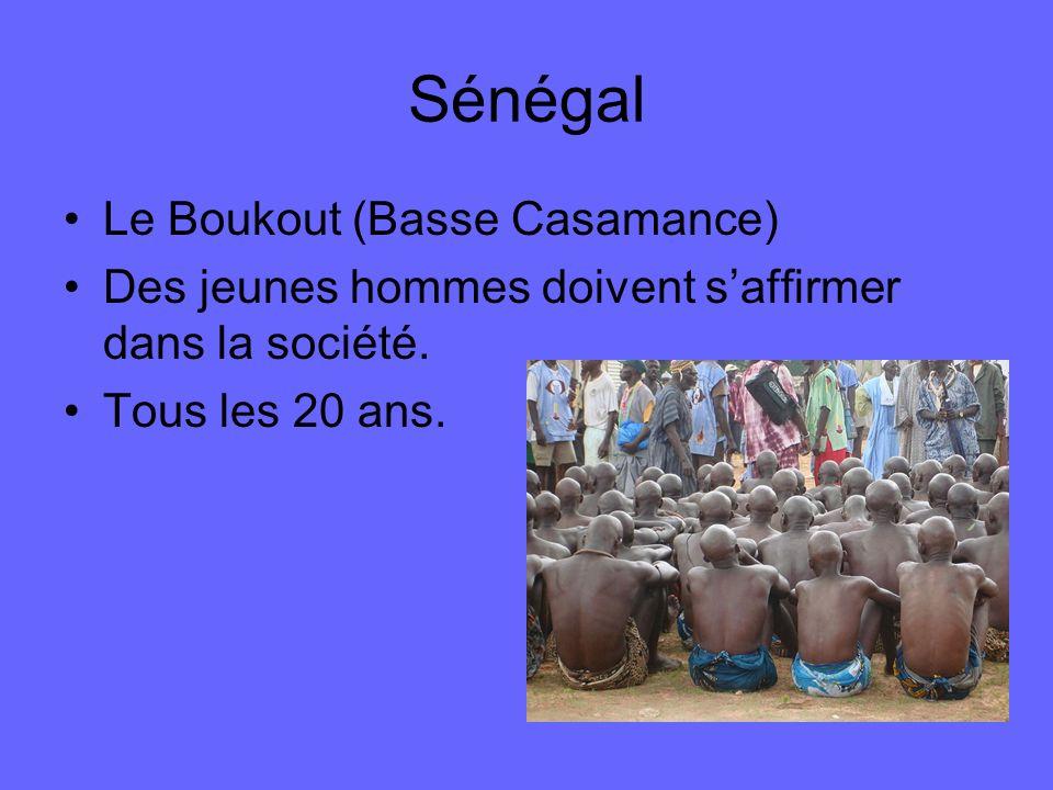 Sénégal Le Boukout (Basse Casamance) Des jeunes hommes doivent saffirmer dans la société. Tous les 20 ans.
