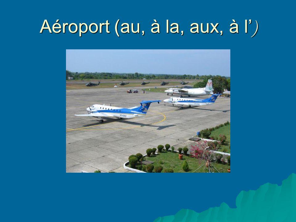 Aéroport (au, à la, aux, à l )