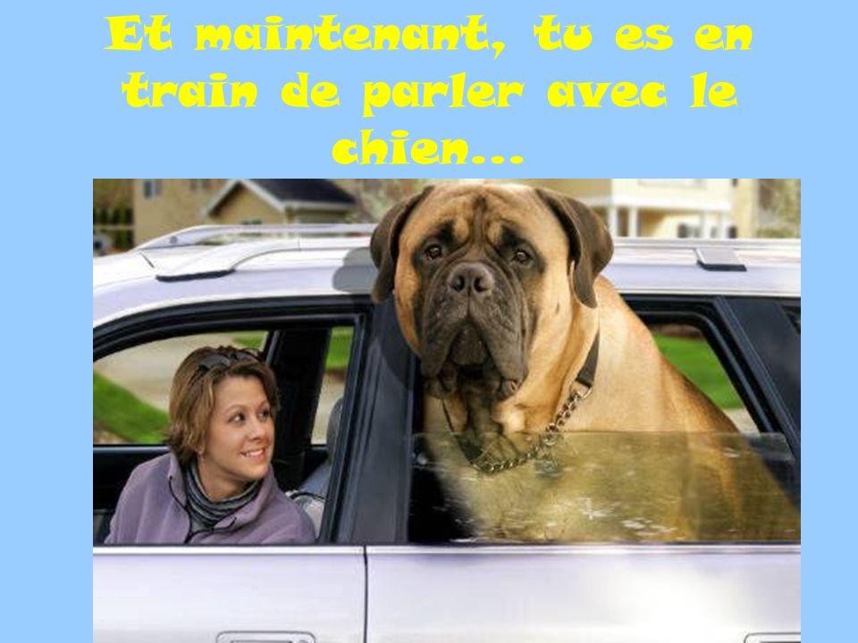 Et maintenant, tu es en train de parler avec le chien…