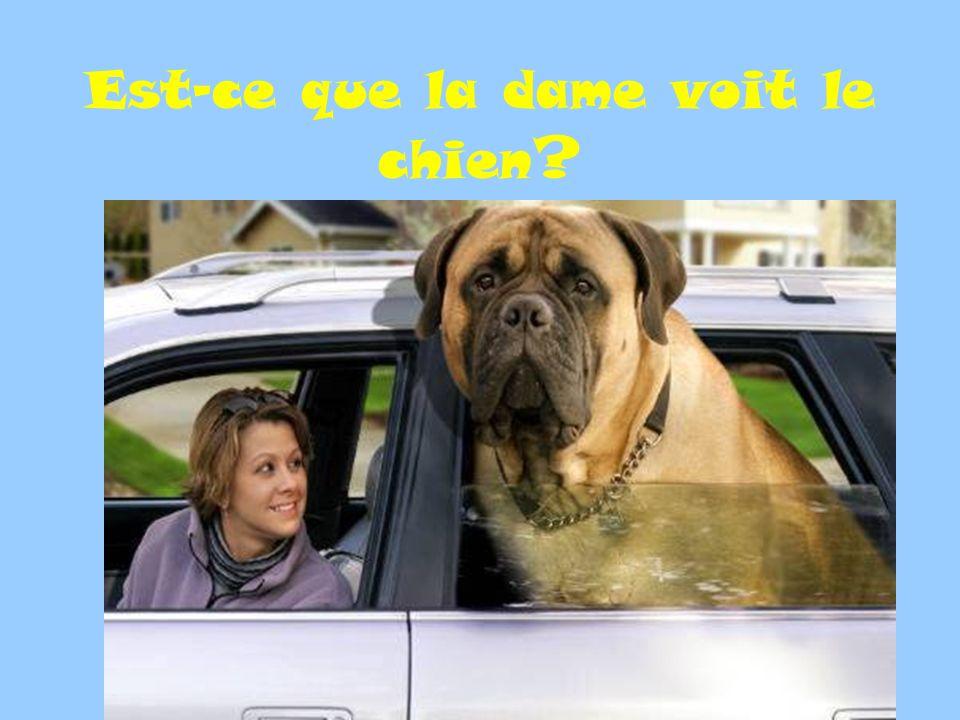 Est-ce que la dame voit le chien ?