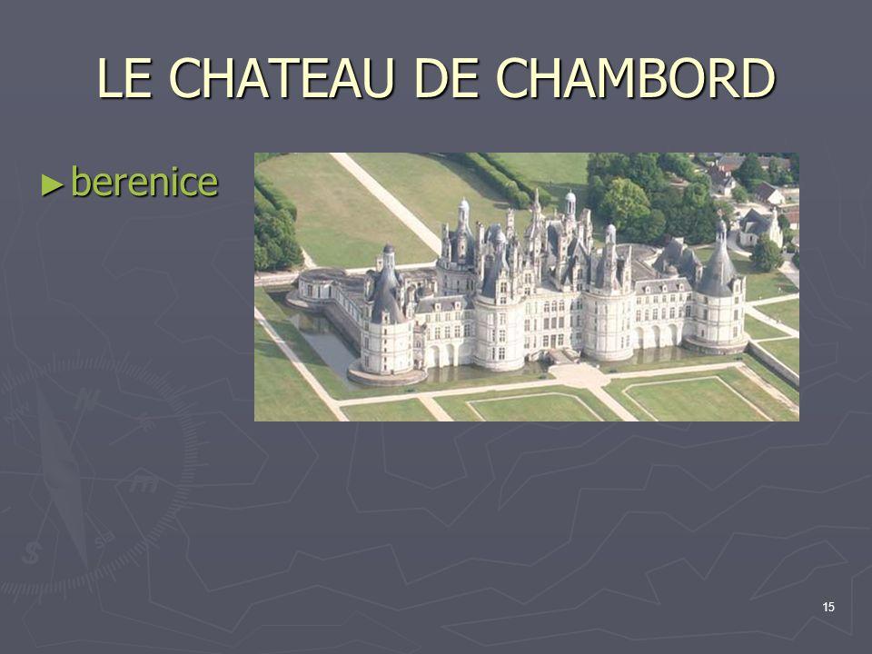 15 LE CHATEAU DE CHAMBORD berenice berenice