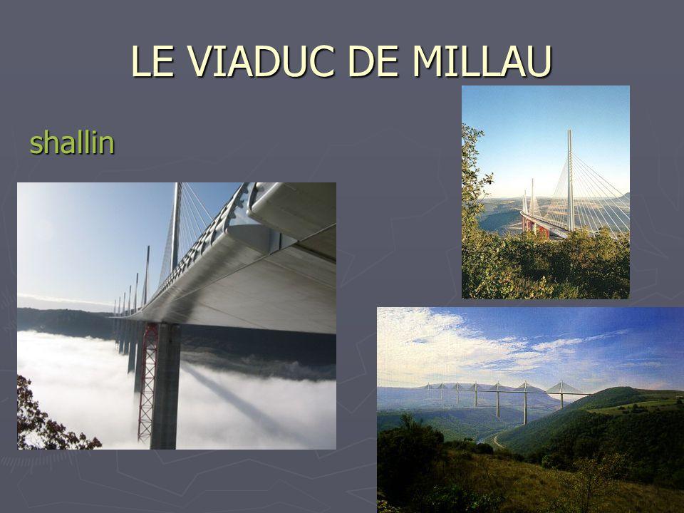 21 LE VIADUC DE MILLAU shallin