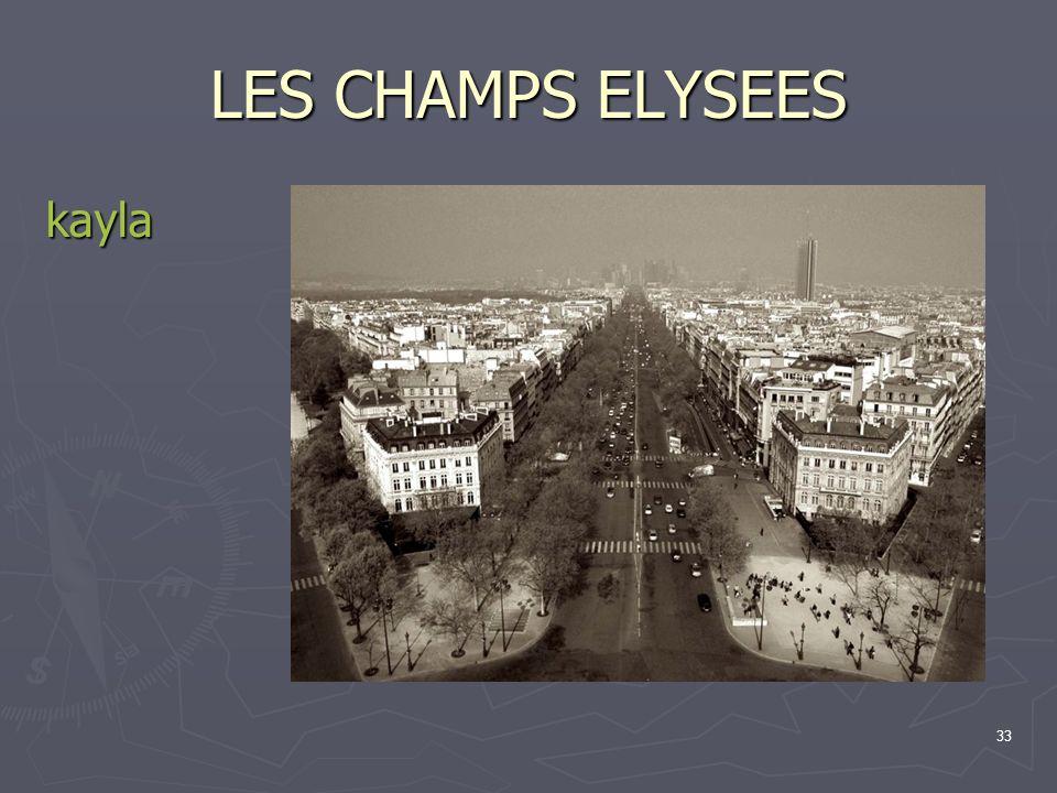 33 LES CHAMPS ELYSEES kayla