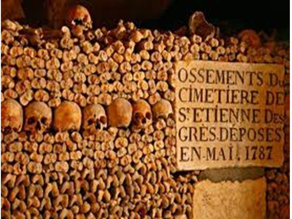 Où se trouvent les Catacombes Les catacombes de Paris sont dans le quatorzième arrondissement de Paris. Ils se trouvent sur la rive droite de la seine