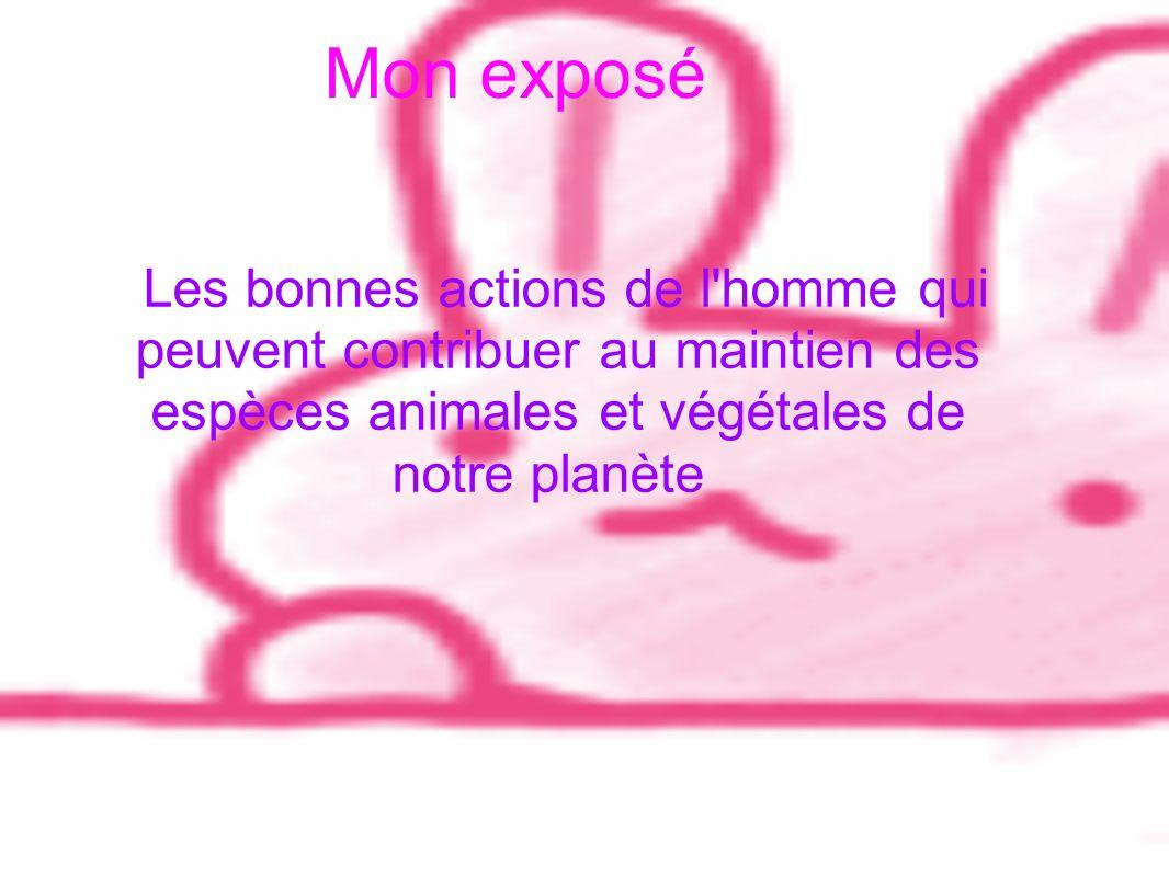 Mon exposé Les bonnes actions de l'homme qui peuvent contribuer au maintien des espèces animales et végétales de notre planète
