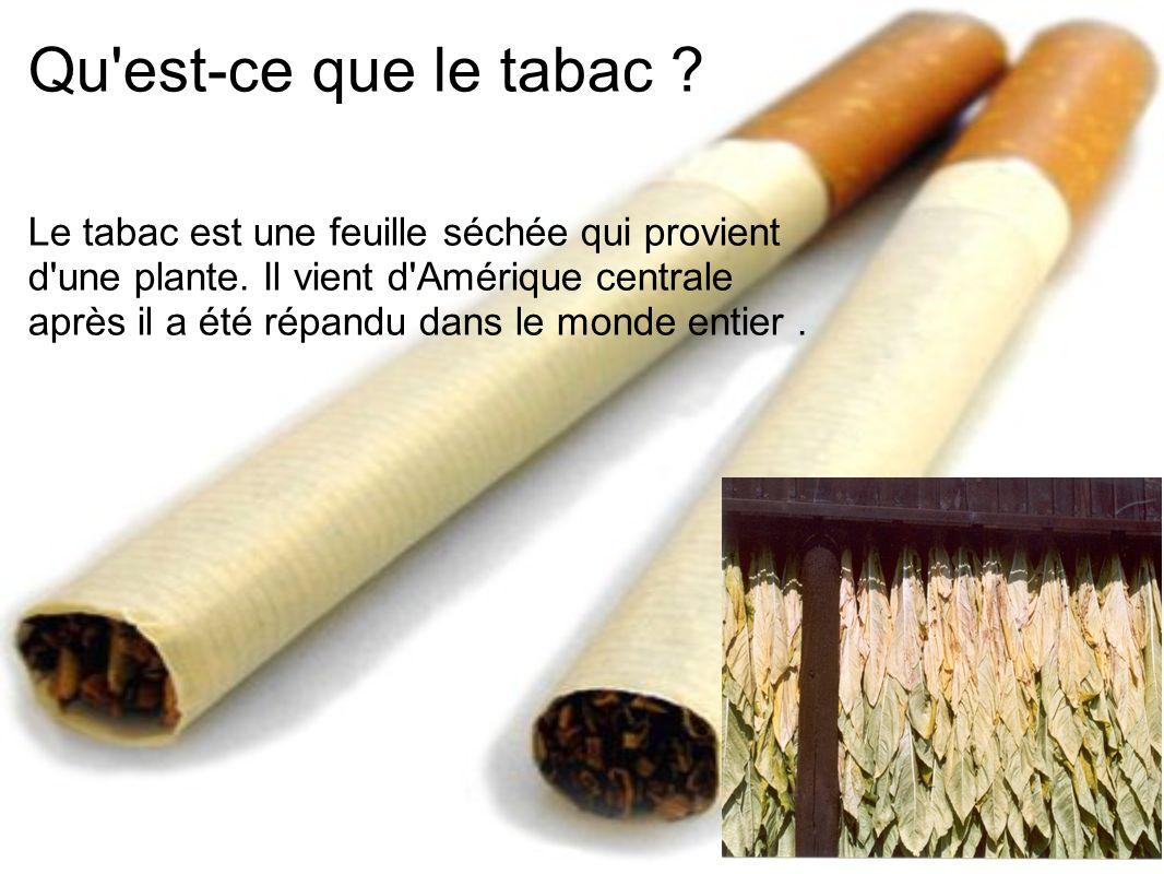Qu'est-ce que le tabac ? Le tabac est une feuille séchée qui provient d'une plante. Il vient d'Amérique centrale après il a été répandu dans le monde