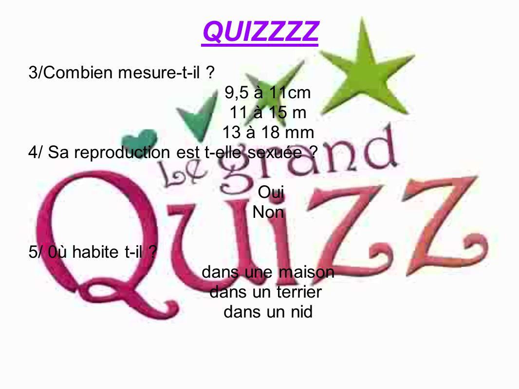 QUIZZZZ 3/Combien mesure-t-il ? 9,5 à 11cm 11 à 15 m 13 à 18 mm 4/ Sa reproduction est t-elle sexuée ? Oui Non 5/ 0ù habite t-il ? dans une maison dan