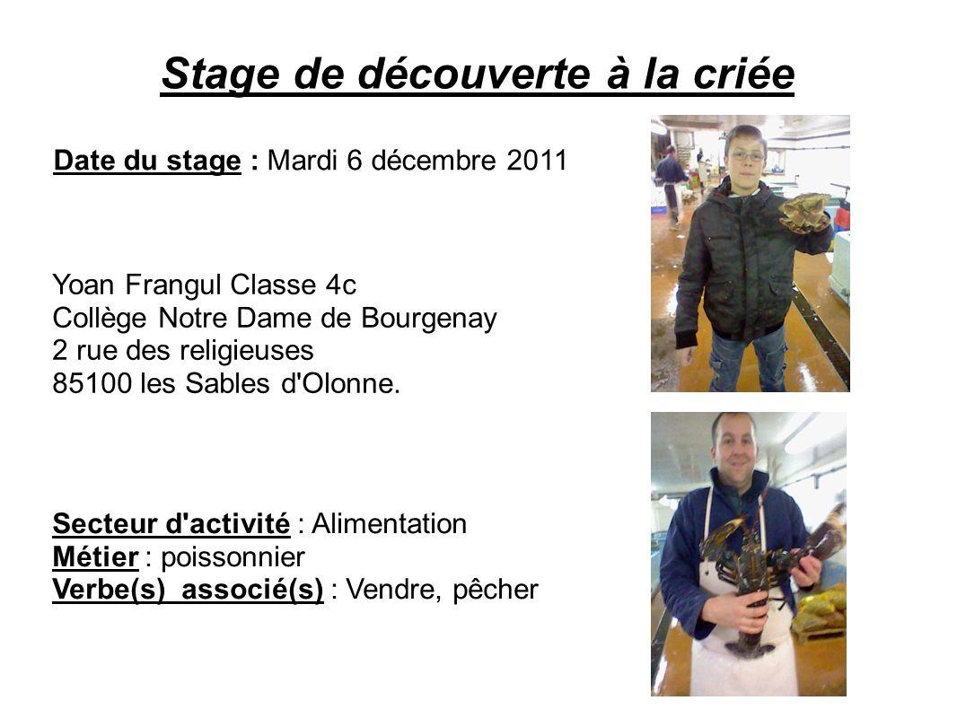 Stage de découverte à la criée Date du stage : Mardi 6 décembre 2011 Secteur d'activité : Alimentation Métier : poissonnier Verbe(s) associé(s) : Vend