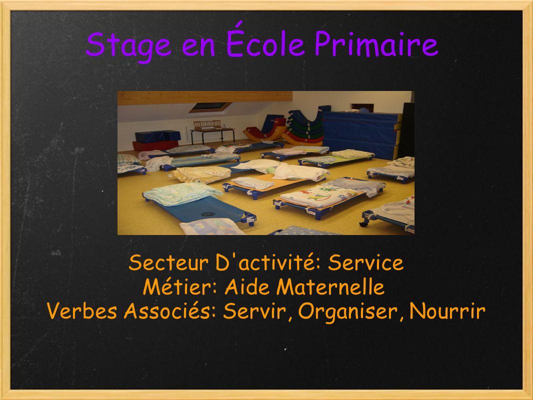 Stage en École Primaire Secteur D activité: Service Métier: Aide Maternelle Verbes Associés: Servir, Organiser, Nourrir