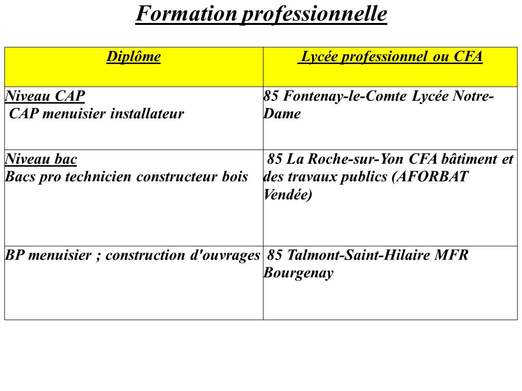Formation professionnelle Diplôme Lycée professionnel ou CFA Niveau CAP CAP menuisier installateur 85 Fontenay-le-Comte Lycée Notre- Dame Niveau bac Bacs pro technicien constructeur bois 85 La Roche-sur-Yon CFA bâtiment et des travaux publics (AFORBAT Vendée) BP menuisier ; construction d ouvrages 85 Talmont-Saint-Hilaire MFR Bourgenay