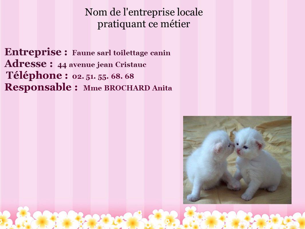 Nom de l'entreprise locale pratiquant ce métier Entreprise : Faune sarl toilettage canin Adresse : 44 avenue jean Cristauc Téléphone : 02. 51. 55. 68.