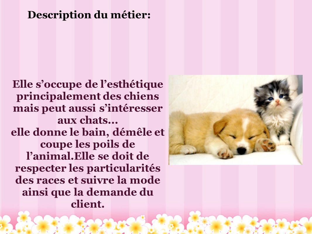 Description du métier: Elle soccupe de lesthétique principalement des chiens mais peut aussi sintéresser aux chats... elle donne le bain, démêle et co