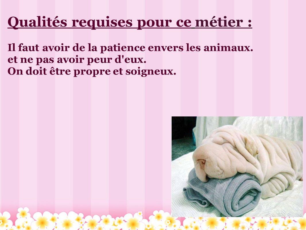 Qualités requises pour ce métier : Il faut avoir de la patience envers les animaux. et ne pas avoir peur d'eux. On doit être propre et soigneux.