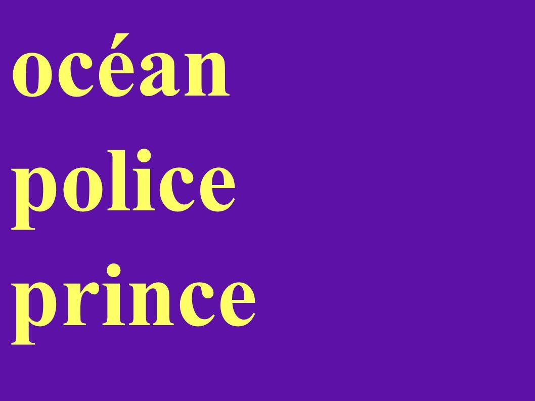 océan police prince