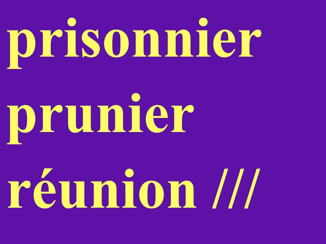 prisonnier prunier réunion ///