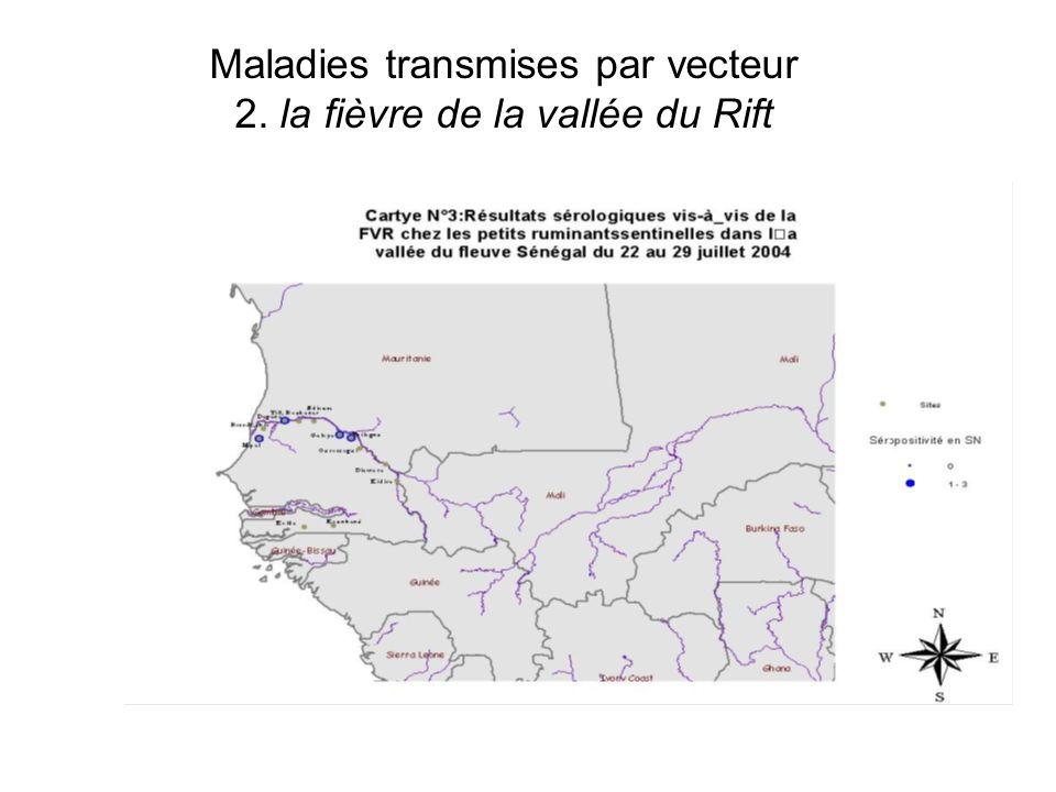 Maladies transmises par vecteur 2. la fièvre de la vallée du Rift