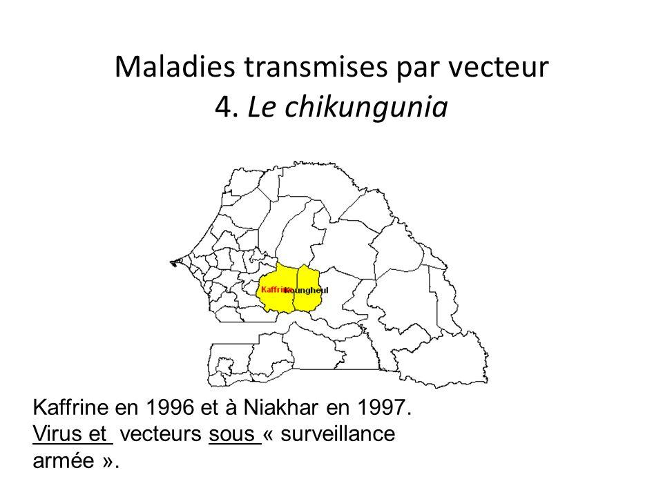 Maladies transmises par vecteur 4. Le chikungunia Kaffrine en 1996 et à Niakhar en 1997. Virus et vecteurs sous « surveillance armée ».
