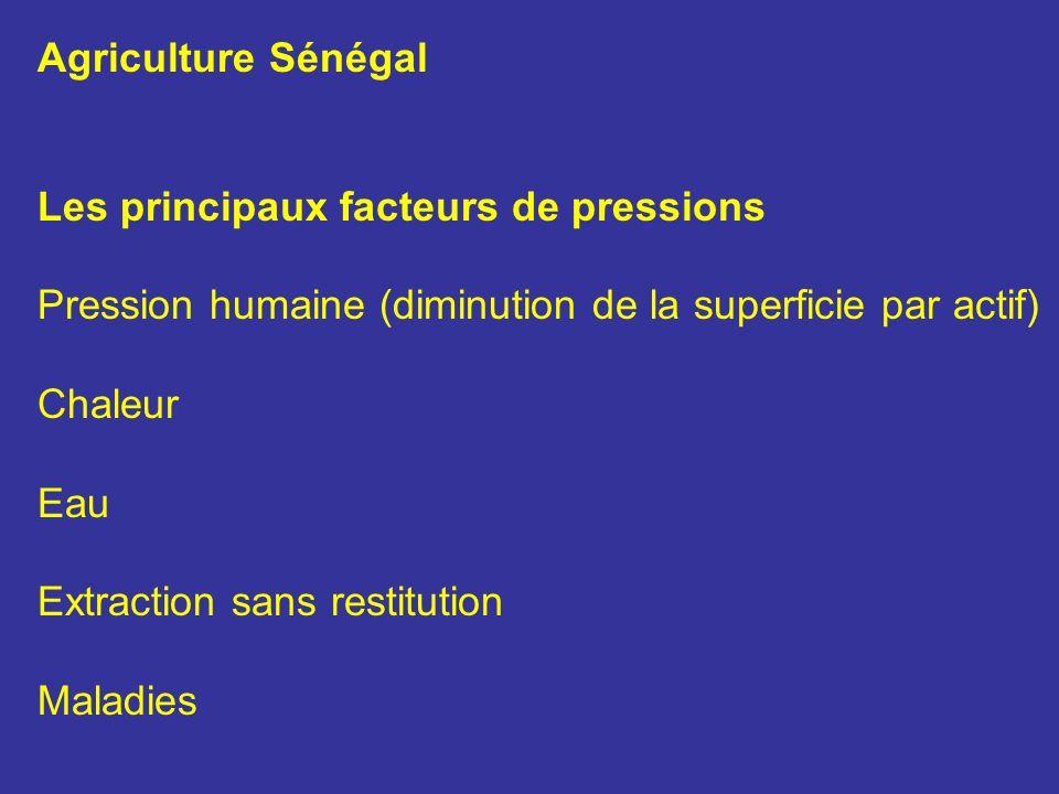 Agriculture Sénégal Les principaux facteurs de pressions Pression humaine (diminution de la superficie par actif) Chaleur Eau Extraction sans restitut