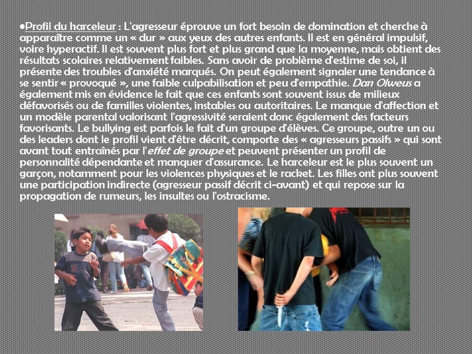Profil du harceleur : L'agresseur éprouve un fort besoin de domination et cherche à apparaître comme un « dur » aux yeux des autres enfants. Il est en