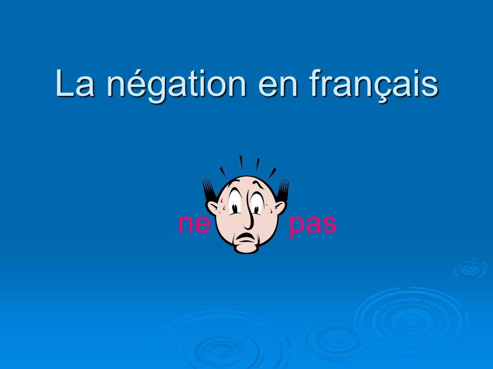 La négation en français nepas