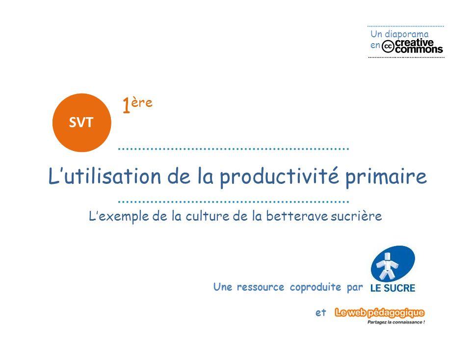 Un diaporama en Une ressource coproduite par et 1 ère SVT Lutilisation de la productivité primaire Lexemple de la culture de la betterave sucrière