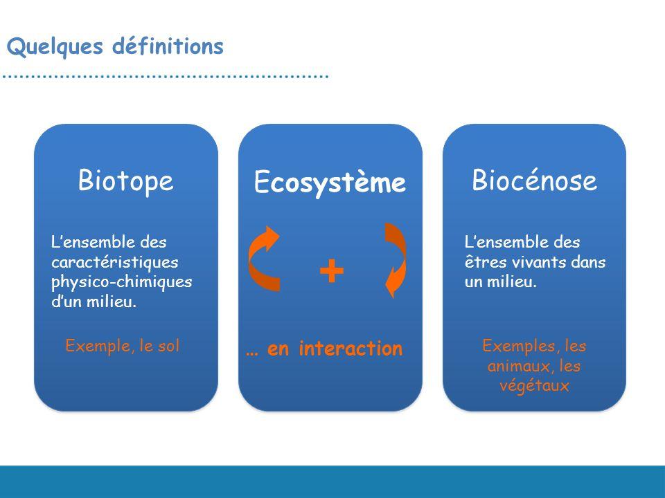 Quelques définitions Biotope Ecosystème Biocénose Lensemble des caractéristiques physico-chimiques dun milieu. Lensemble des êtres vivants dans un mil